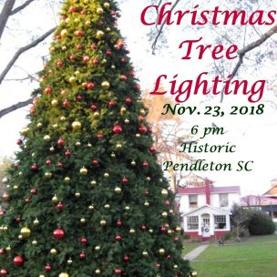 Annual Lighting of the Christmas Tree