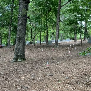Community input needed on unmarked African-American graves at Woodland Cemetery