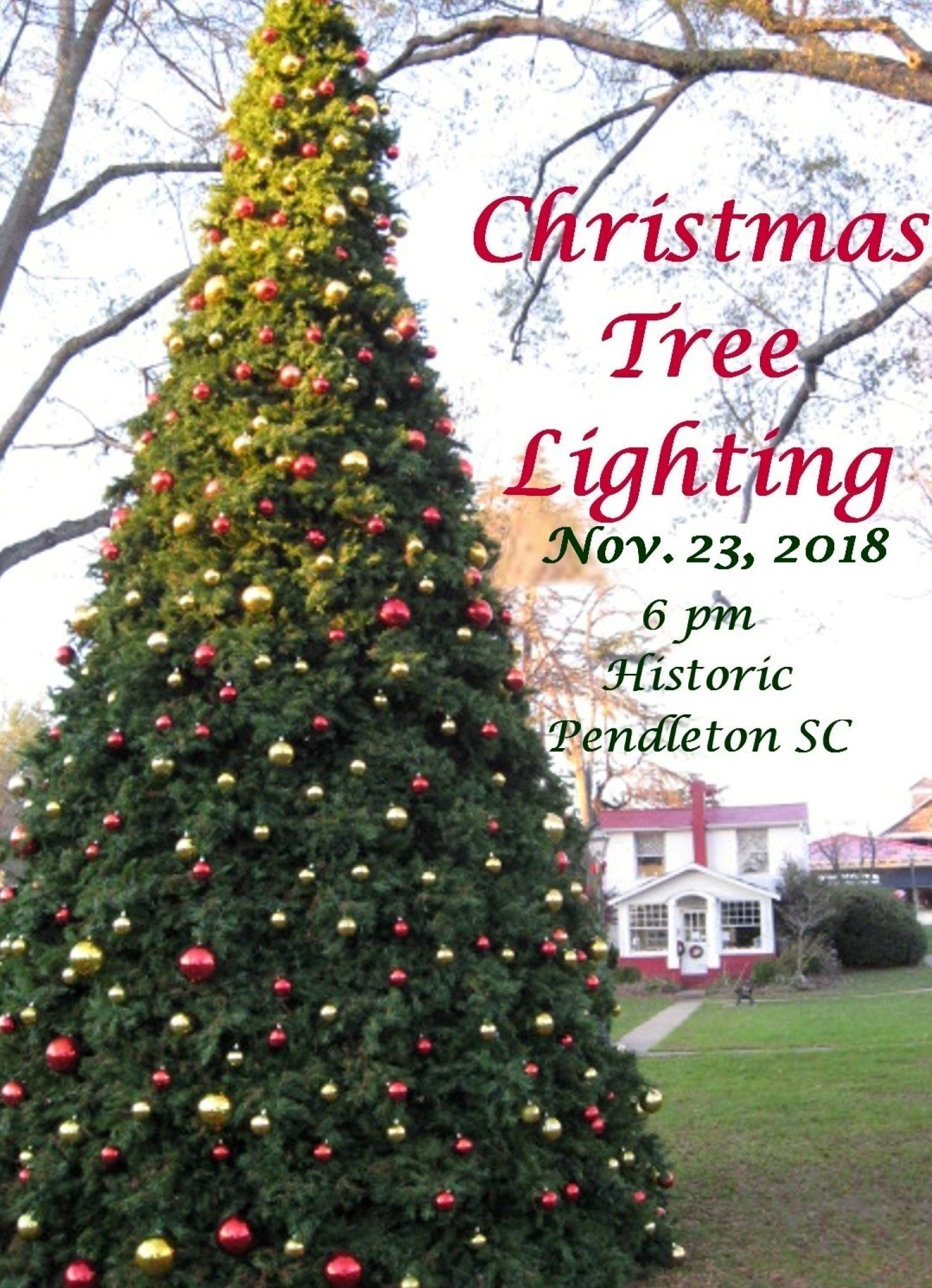 Annual Lighting of the Christmas Tree